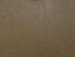 Amendoa jacigua
