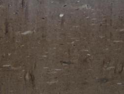 cygnos escovado