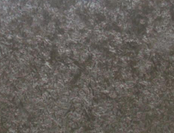 meteorus escovado